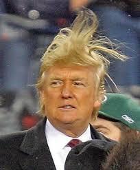 trumps-hair-4